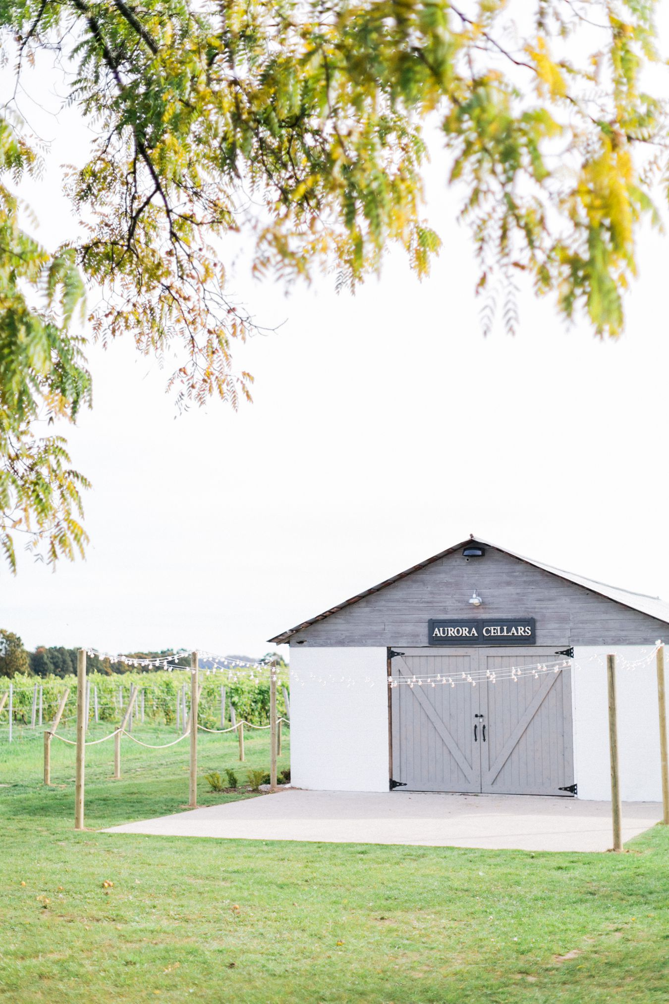 Leland Vineyard Wedding Photography | Aurora Cellars | Sincerely, Ginger Event Design & Production | Cory Weber Photography